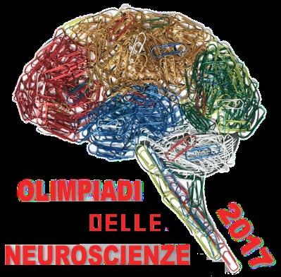 Olimpiadi Neuroscienze 2017