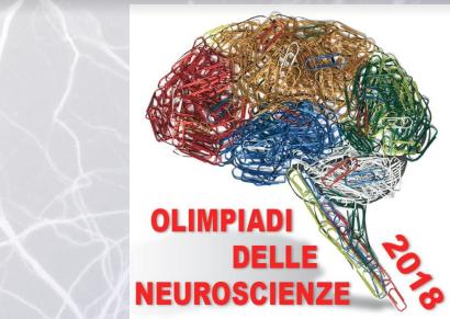 Olimpiadi delle Neuroscienze 2018